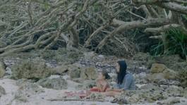 Die Insel der hungrigen Geister Gabrielle Brady